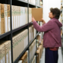 About SCI Archives