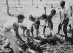 Dhaka 1967 -